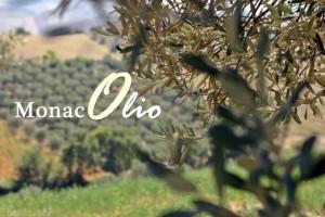 L'azienda Monaco produce olio biologico certificato