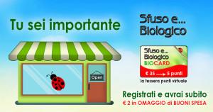 Il banner presente nel sito di Sfuso e Biologico
