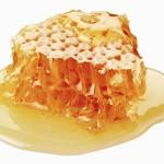 Apicoltura e riflessioni sulle api: progetto Terra Fiorita