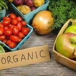 Vendita prodotti biologici