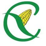 chicchi di mais logo senza glutine lattosio intolleranze